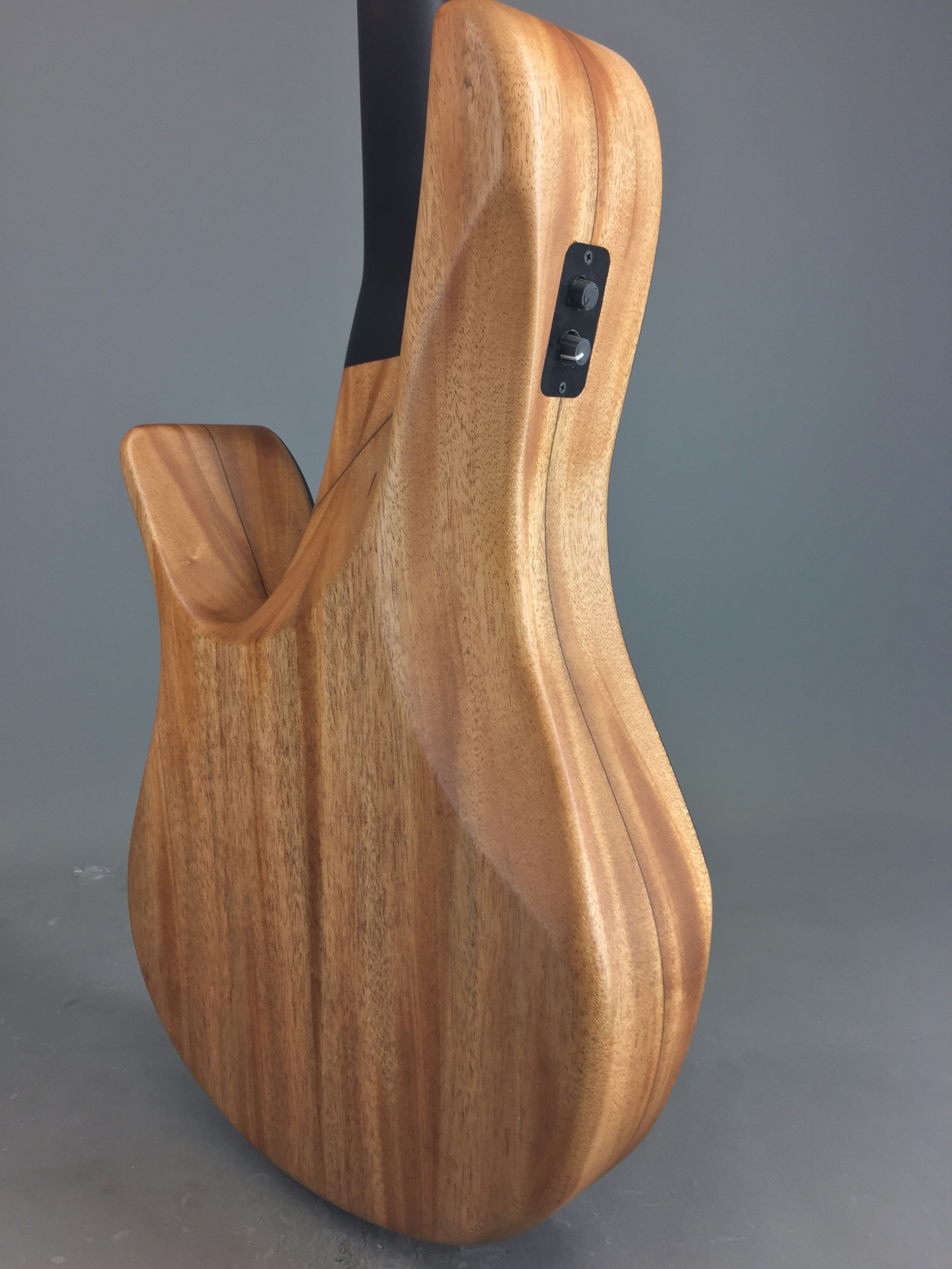 Zon Guitars Zemi Acoustik