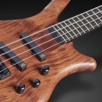 Buyer's Guide | Warwick Thumb Bass