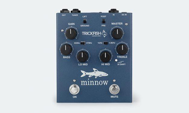 Trickfish Minnow