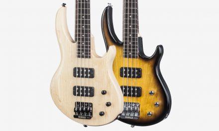Gibson EB Bass 2017 T